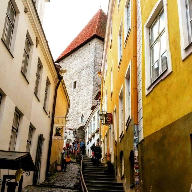 从塔林看爱沙尼亚的首都_图1-7