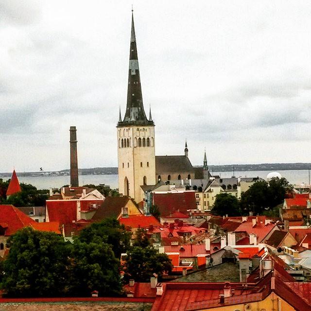 从塔林看爱沙尼亚的首都_图1-16