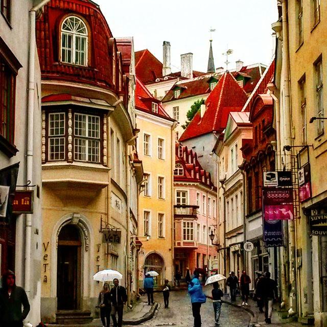从塔林看爱沙尼亚的首都  2_图1-8