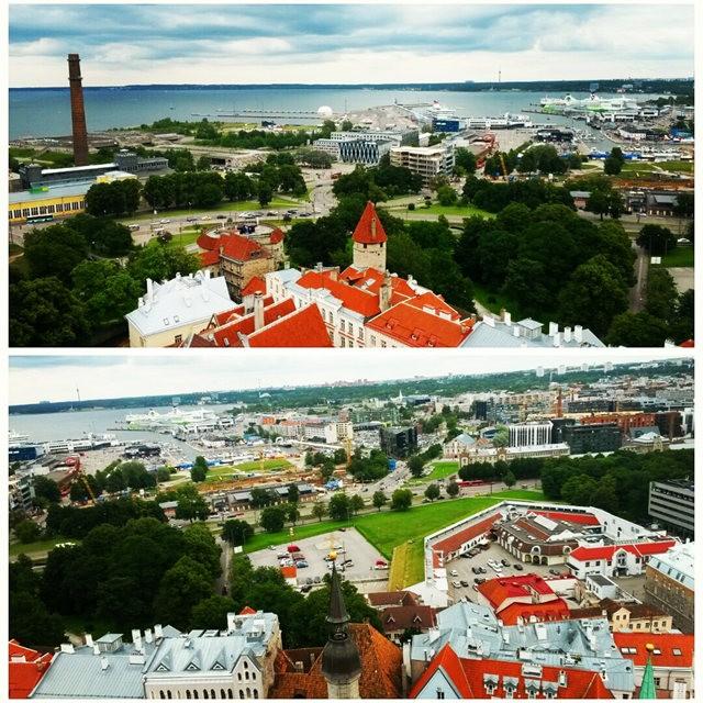 从塔林看爱沙尼亚的首都  2_图1-13