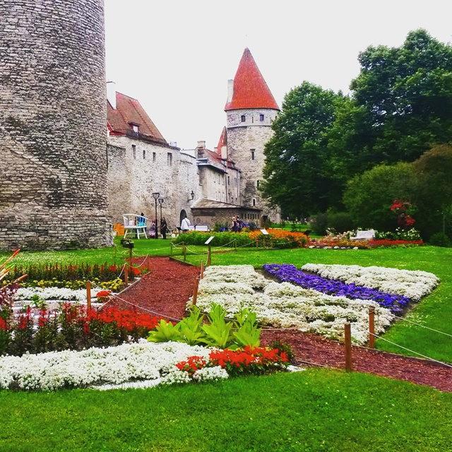 从塔林看爱沙尼亚的首都  2_图1-15