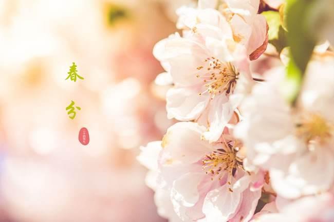 《春分 . 寒暑转同长》_图1-1