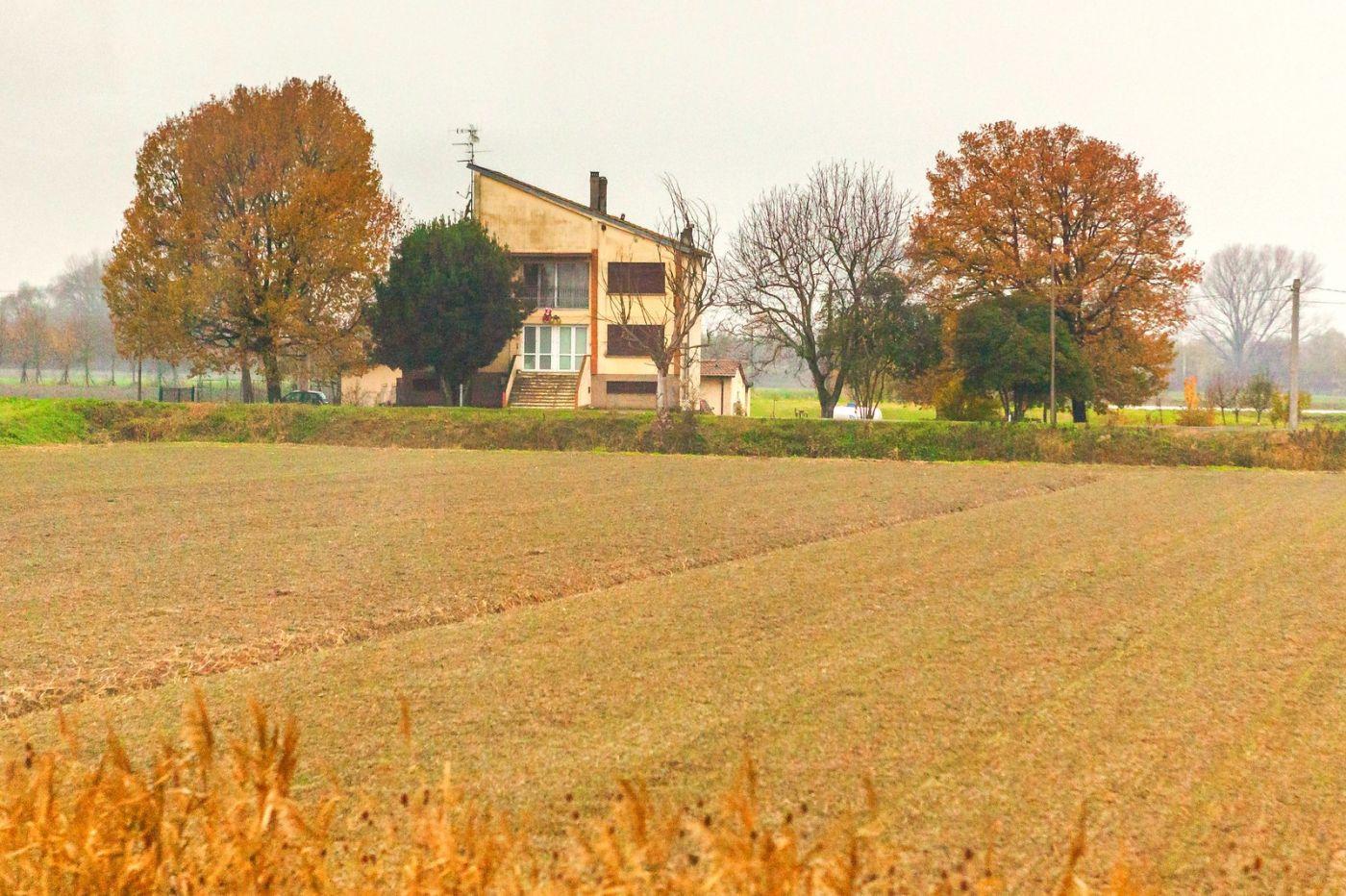 意大利路途,秋后的农村_图1-22