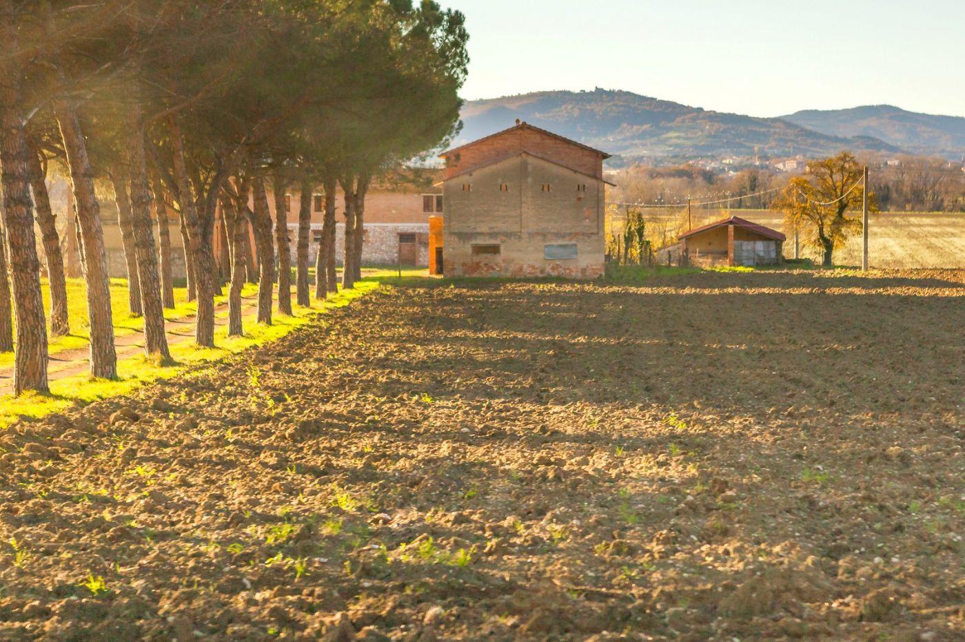 意大利路途,秋后的农村_图1-19
