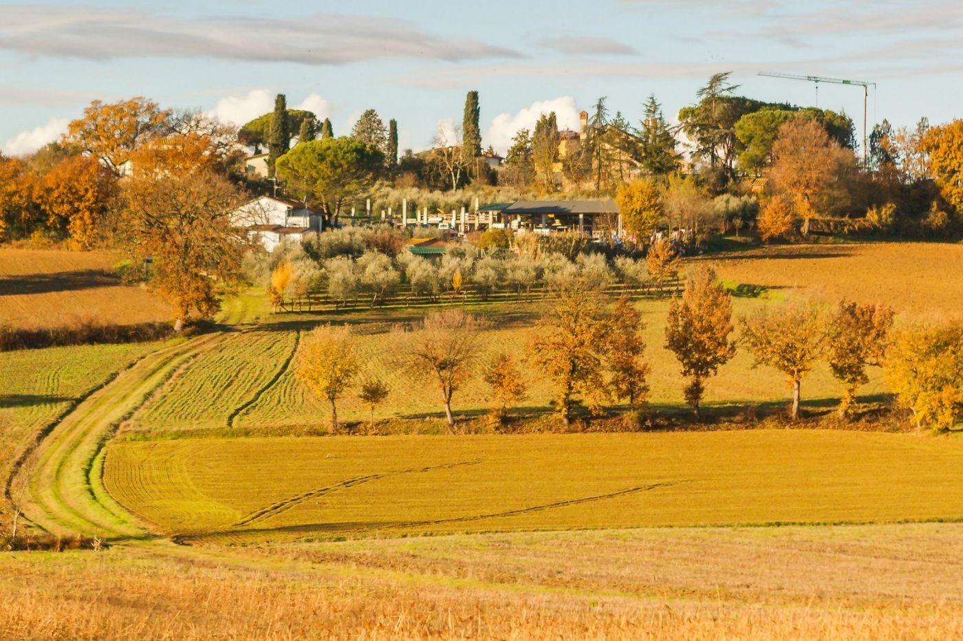 意大利路途,秋后的农村_图1-15