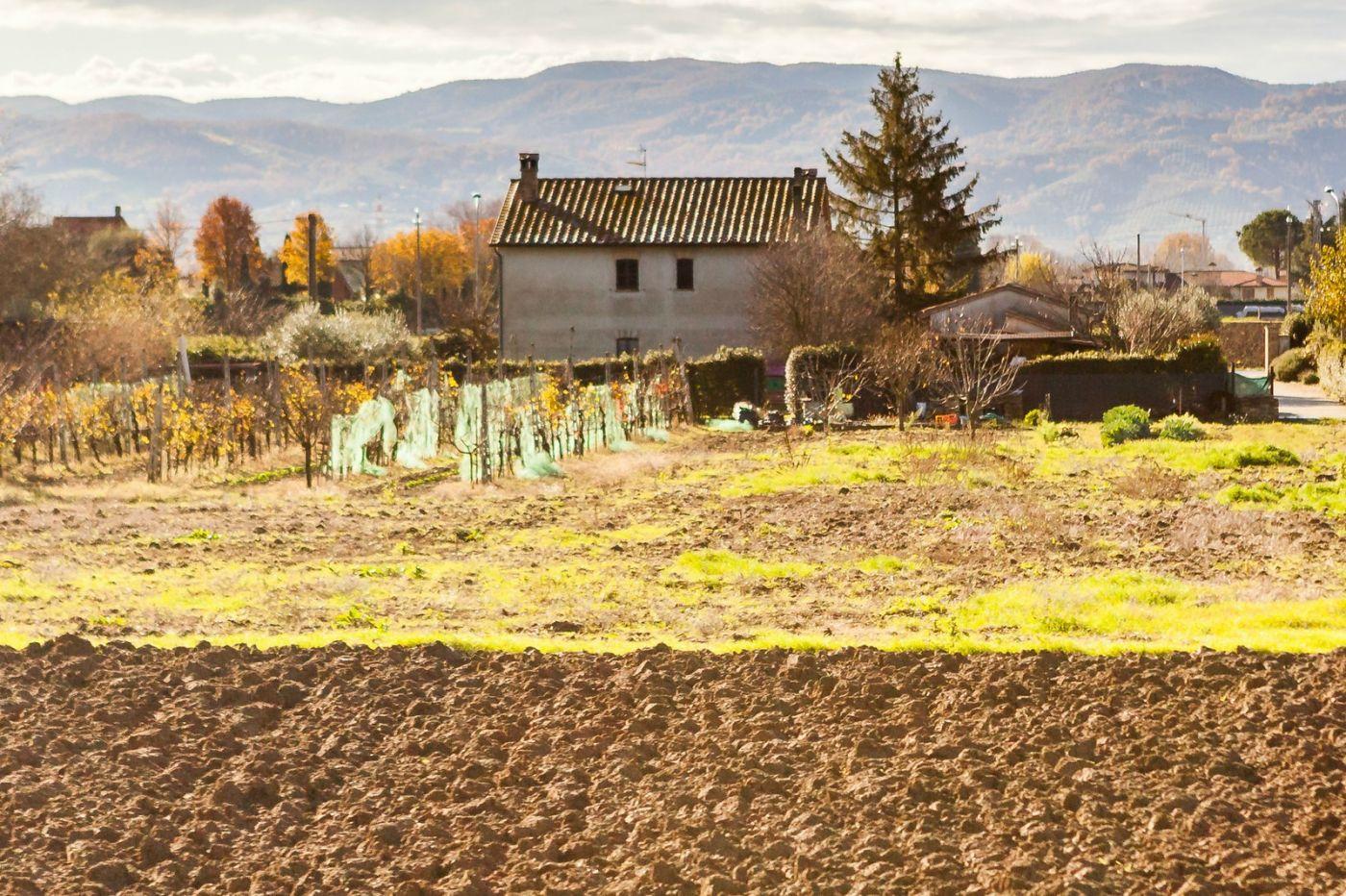 意大利路途,秋后的农村_图1-7