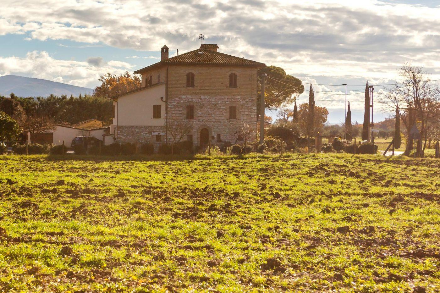 意大利路途,秋后的农村_图1-8