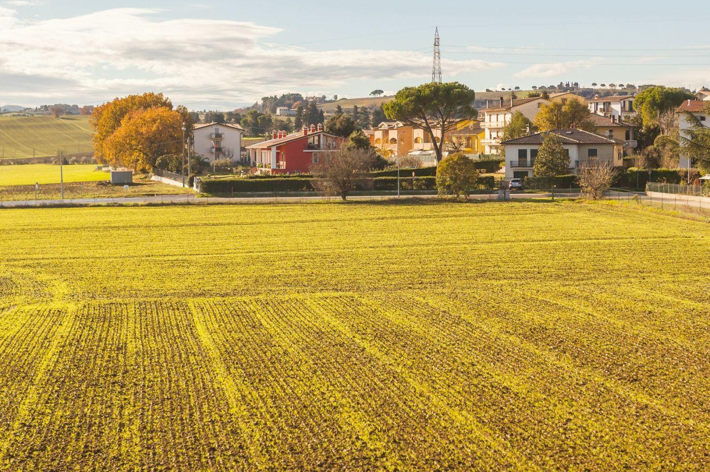 意大利路途,秋后的农村_图1-11