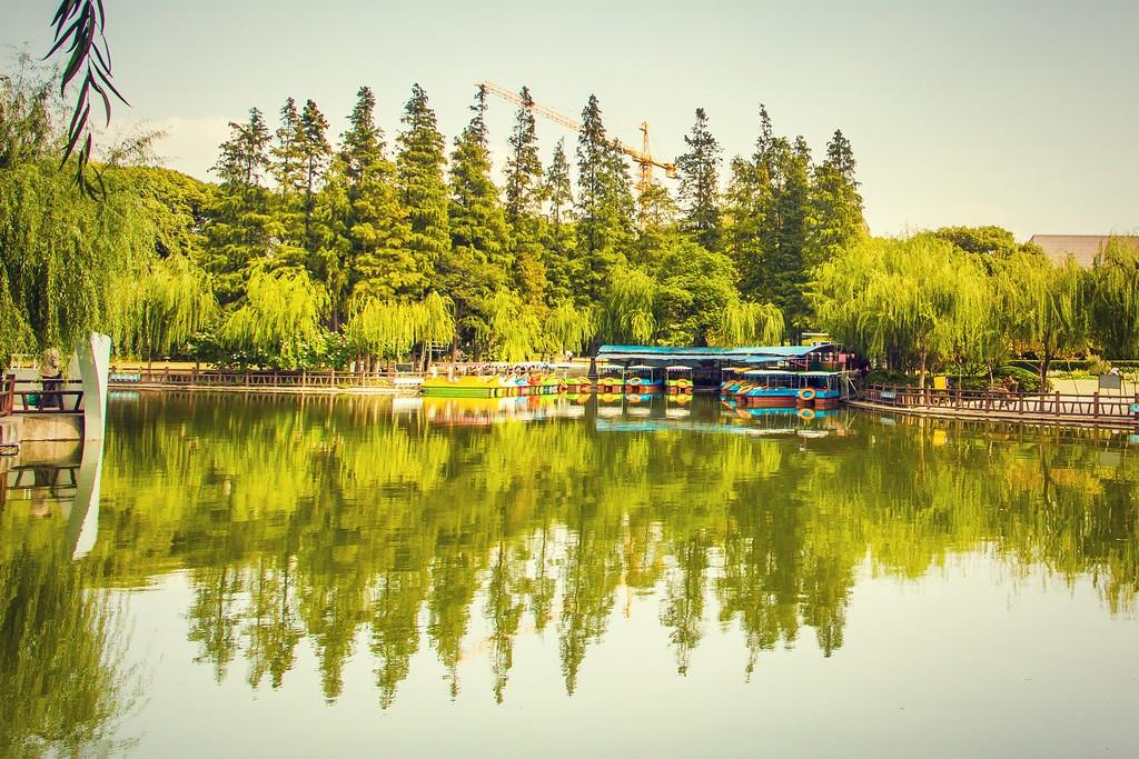 上海高桥公园,忙里偷闲逛一圈_图1-18