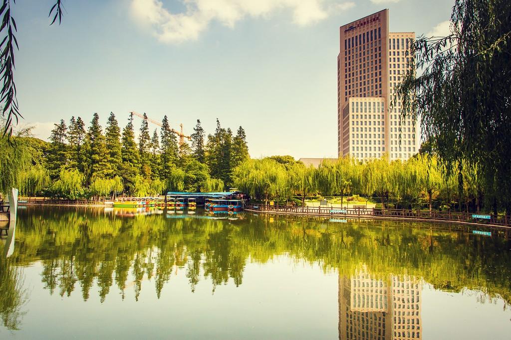 上海高桥公园,忙里偷闲逛一圈_图1-19