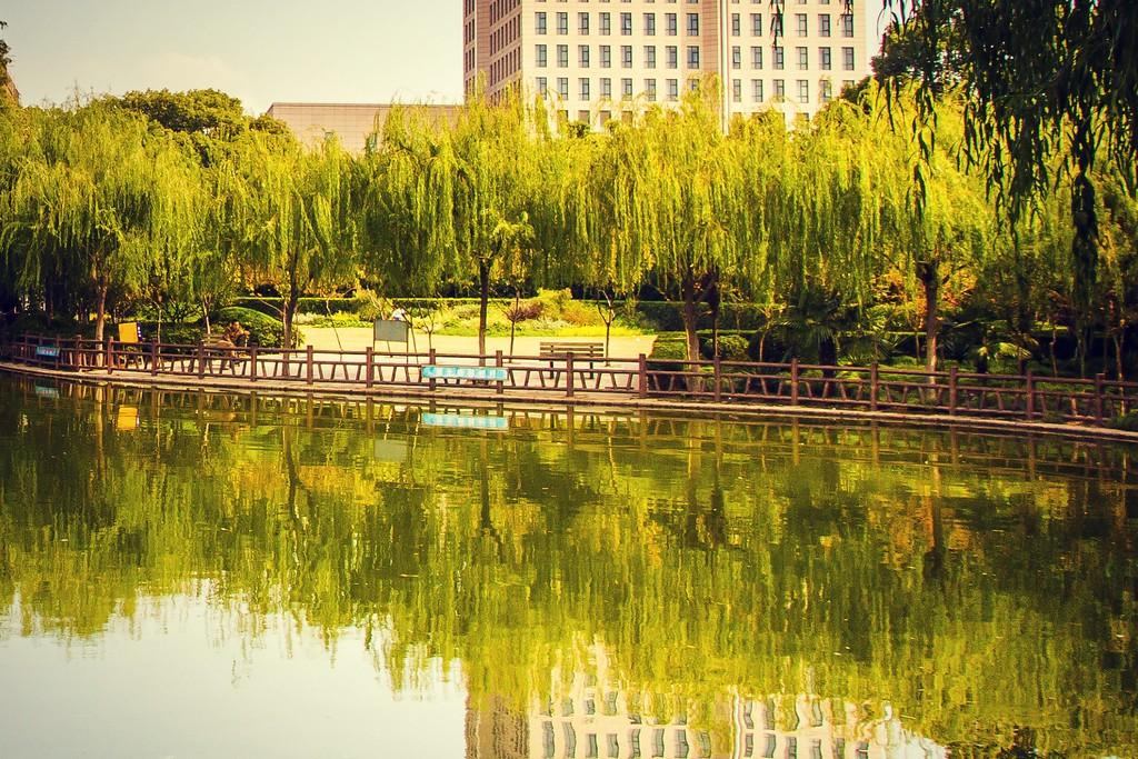 上海高桥公园,忙里偷闲逛一圈_图1-20
