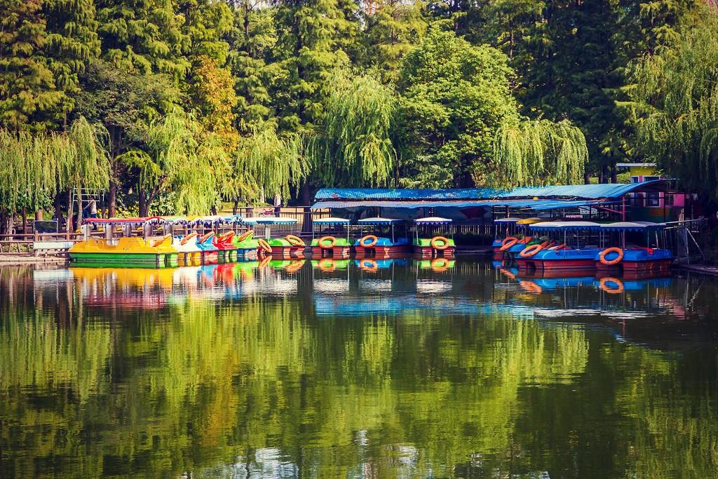 上海高桥公园,忙里偷闲逛一圈_图1-14