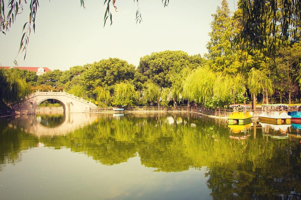 上海高桥公园,忙里偷闲逛一圈_图1-15