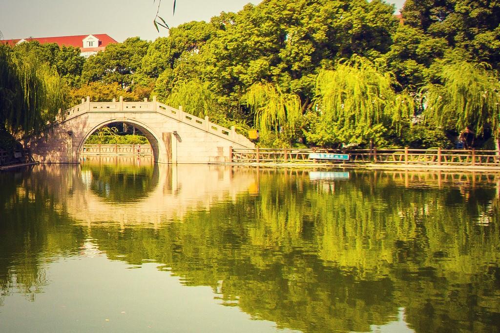 上海高桥公园,忙里偷闲逛一圈_图1-10