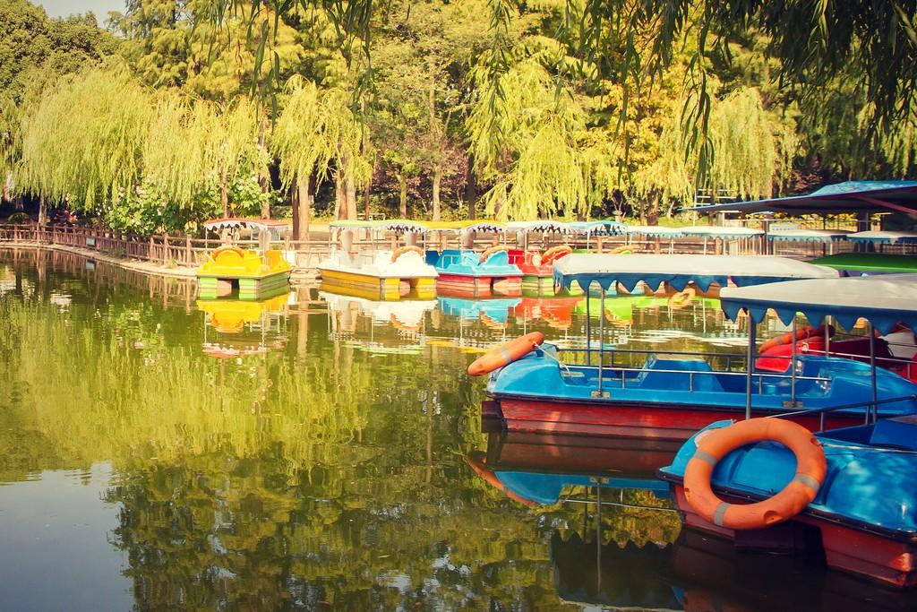 上海高桥公园,忙里偷闲逛一圈_图1-11