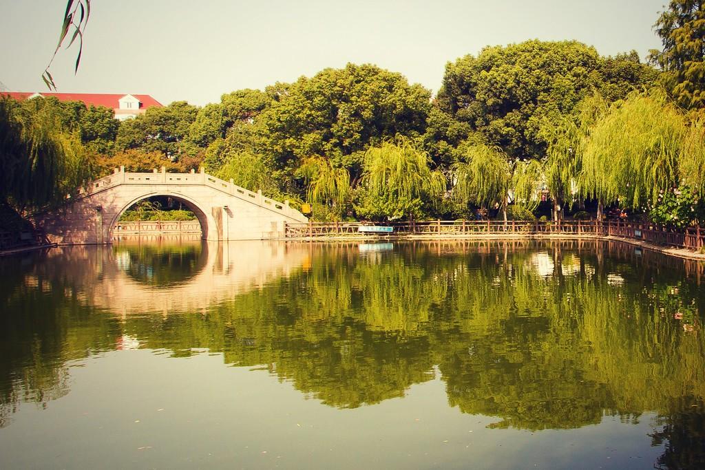 上海高桥公园,忙里偷闲逛一圈_图1-6