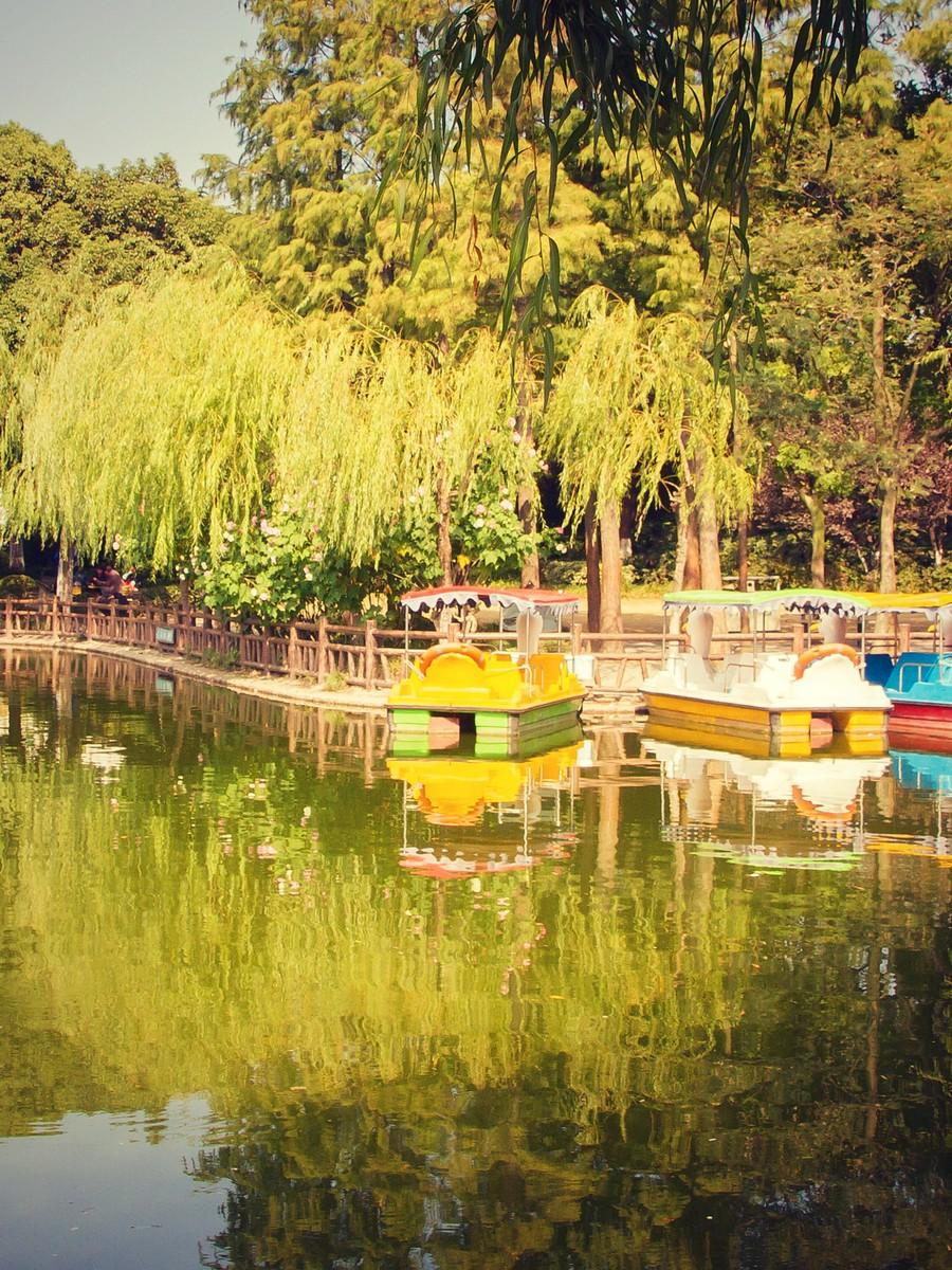 上海高桥公园,忙里偷闲逛一圈_图1-8