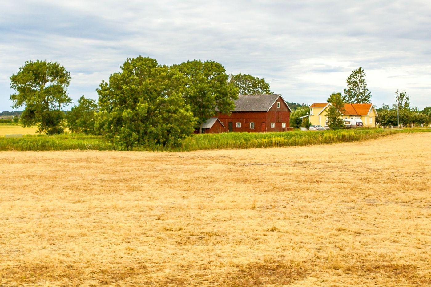 北欧旅途,农庄农舍多姿多彩_图1-30