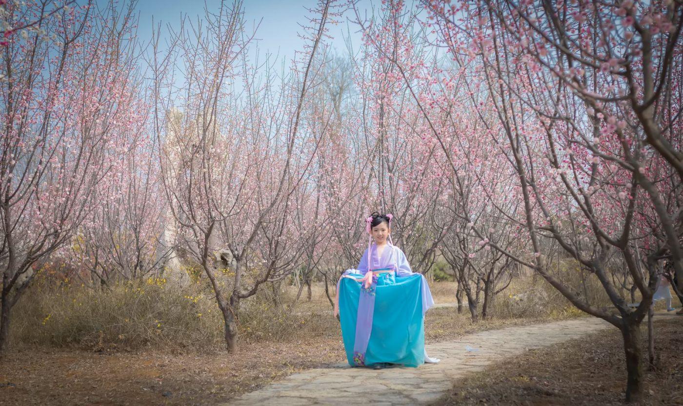 翟家小妮翟雅慧之春到梅园 花儿与少年系列 梅园尽显中国风_图1-31
