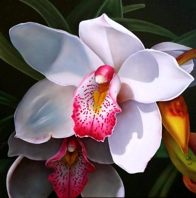 画家奥拉索伦森的作品----兰花_图1-8