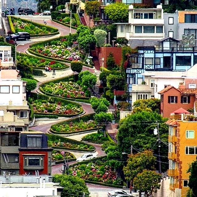 镜头下的旧金山_图1-10