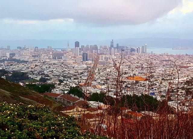 镜头下的旧金山_图1-16