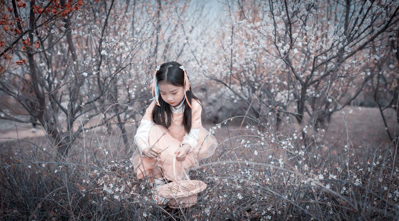 梅林馀妍不争春 小小仙女下凡尘 在费县拍摄小小仙女候依琳_图1-7