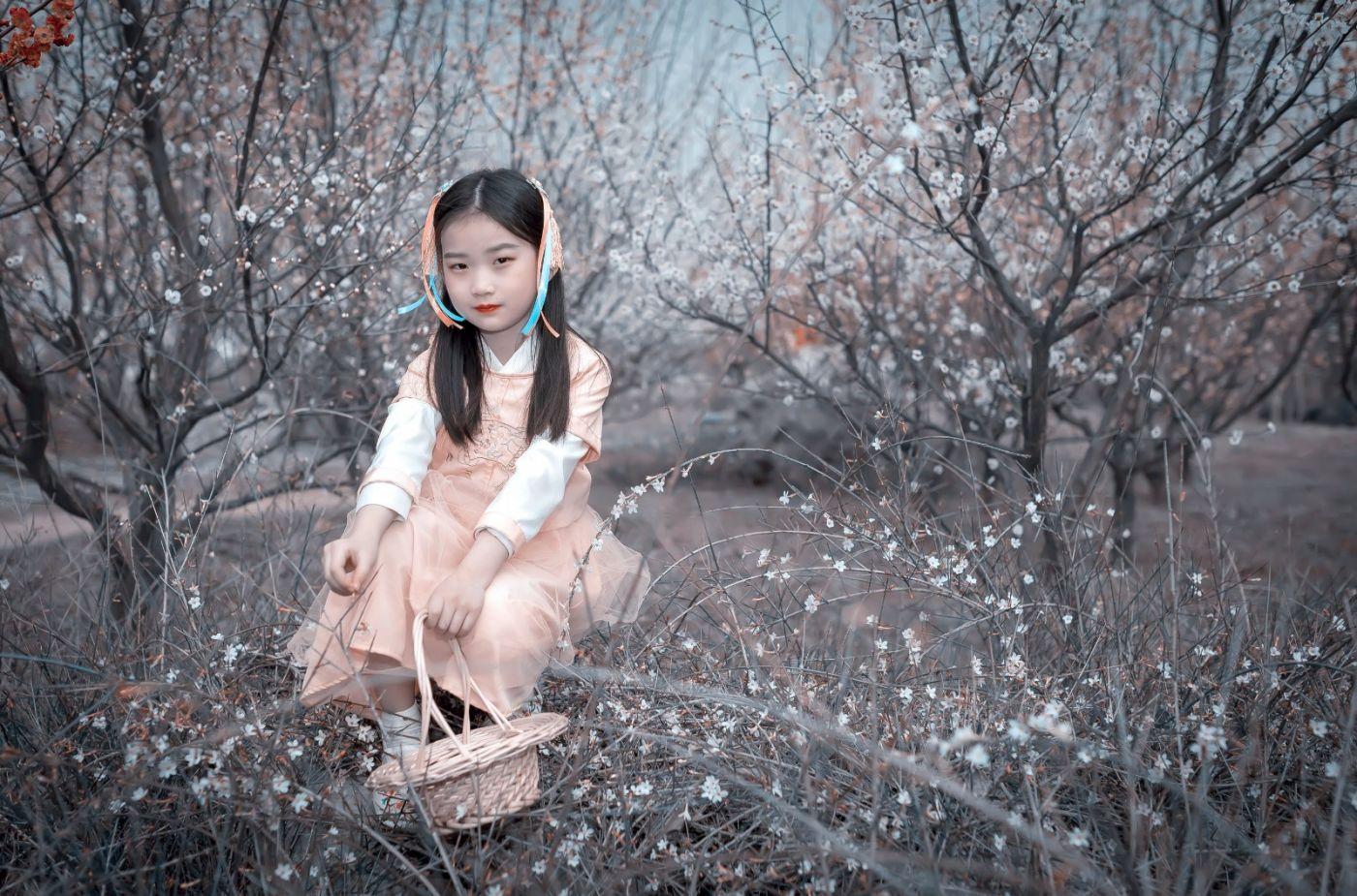梅林馀妍不争春 小小仙女下凡尘 在费县拍摄小小仙女候依琳_图1-9