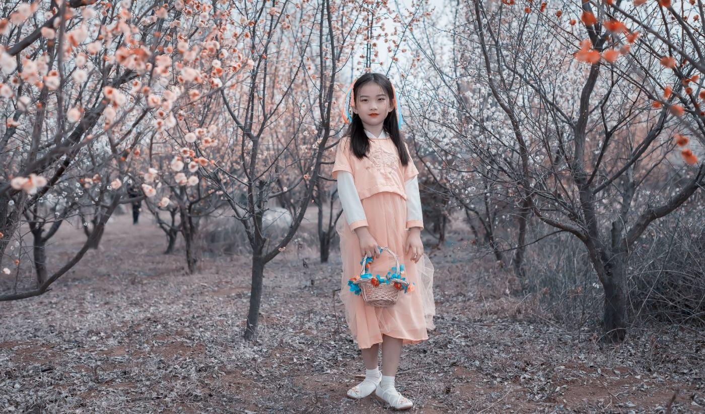 梅林馀妍不争春 小小仙女下凡尘 在费县拍摄小小仙女候依琳_图1-15