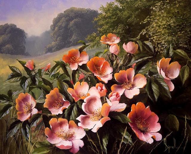 英格兰画家玛丽Dipnall的野生花卉画作_图1-3