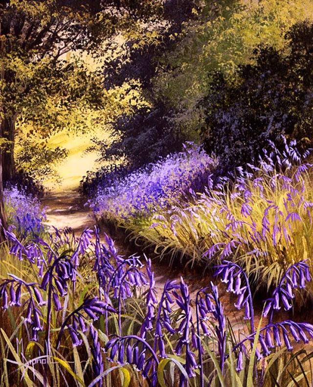 英格兰画家玛丽Dipnall的野生花卉画作_图1-4