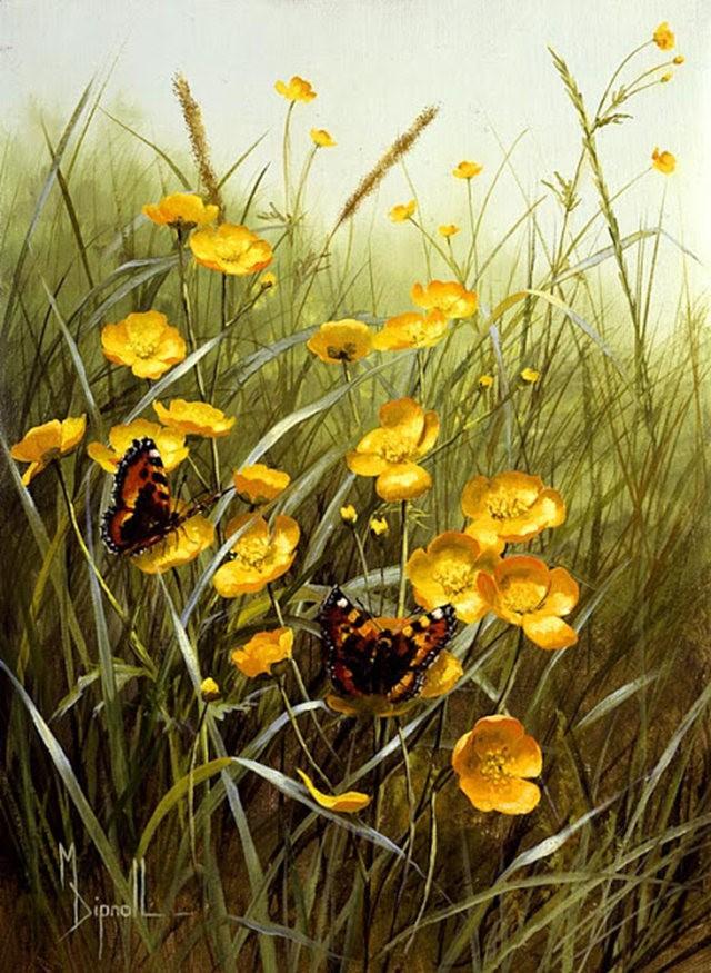 英格兰画家玛丽Dipnall的野生花卉画作_图1-5
