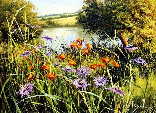 英格兰画家玛丽Dipnall的野生花卉画作_图1-9