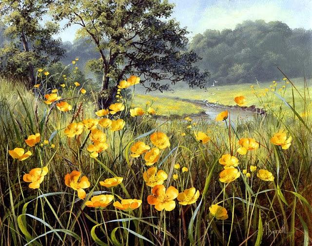 英格兰画家玛丽Dipnall的野生花卉画作_图1-10