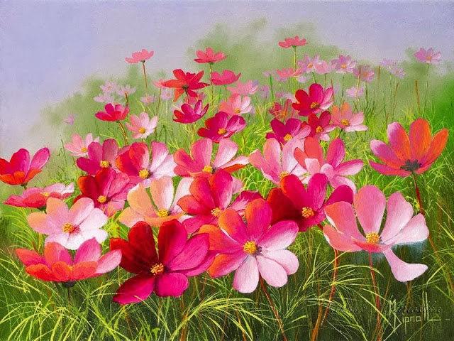 英格兰画家玛丽Dipnall的野生花卉画作_图1-11