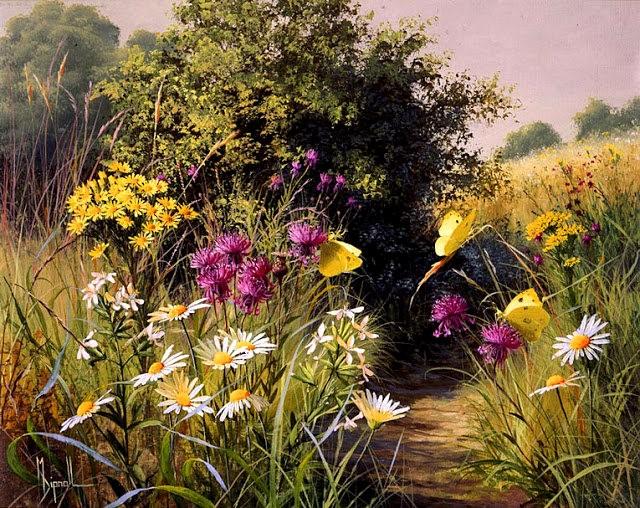 英格兰画家玛丽Dipnall的野生花卉画作_图1-12