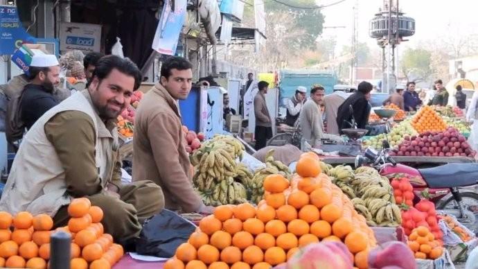 中国包下巴基斯坦上万吨的滞销水果 让国内吃货们高兴乐的不得了 ..._图1-2