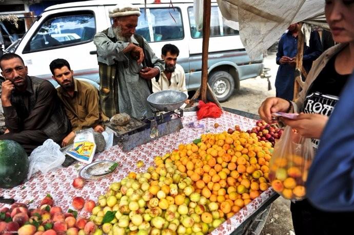 中国包下巴基斯坦上万吨的滞销水果 让国内吃货们高兴乐的不得了 ..._图1-8