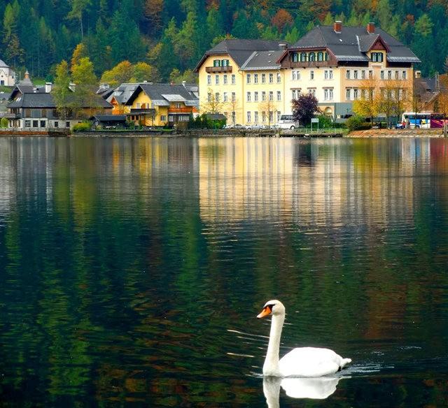 奥地利村庄-----哈尔施塔特_图1-17