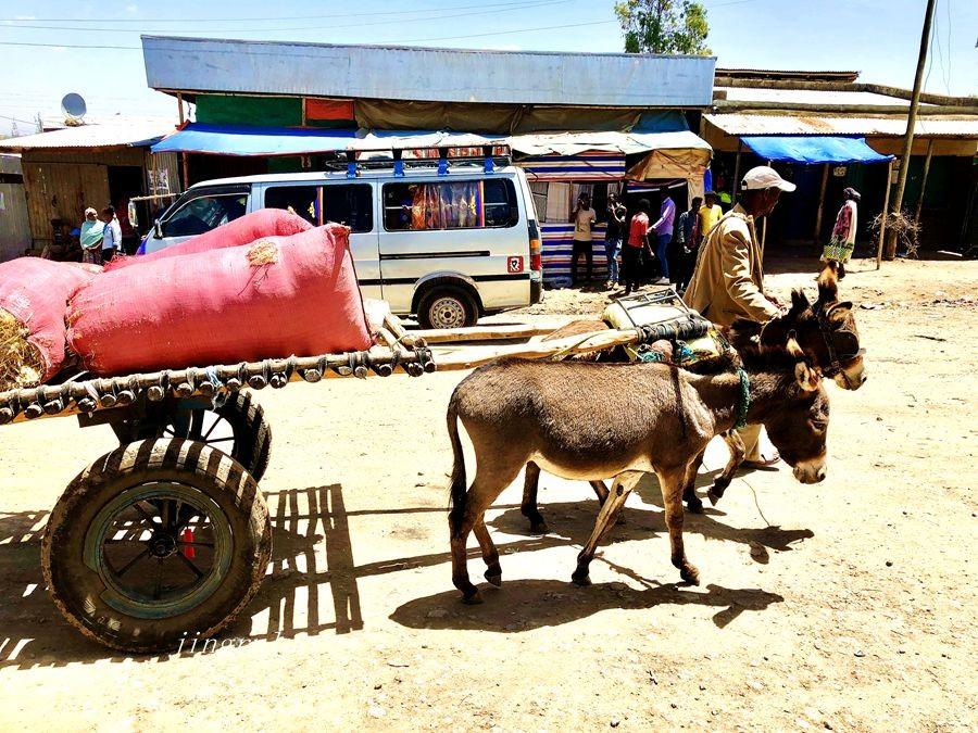 【小虫摄影】在埃塞俄比亚_图1-9