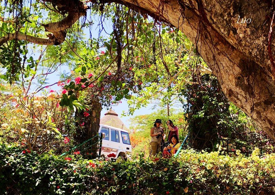 【小虫摄影】在埃塞俄比亚_图1-28
