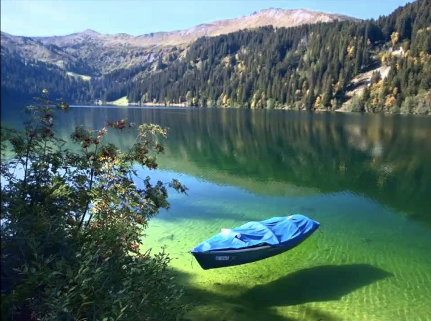 美丽的贝加尔湖为什么爆发排华示威?_图1-5