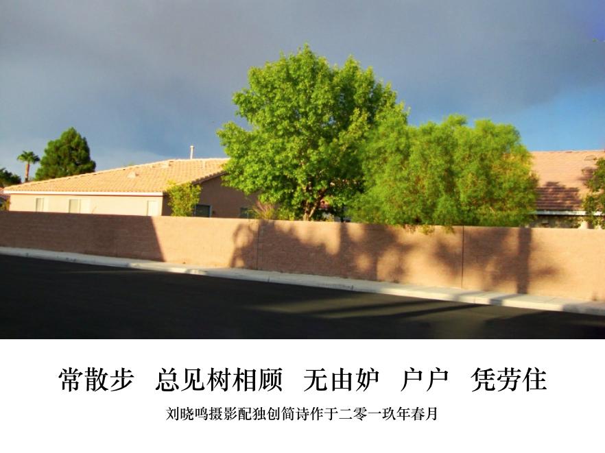 【晓鸣图文】摄影简诗日记篇_图1-5