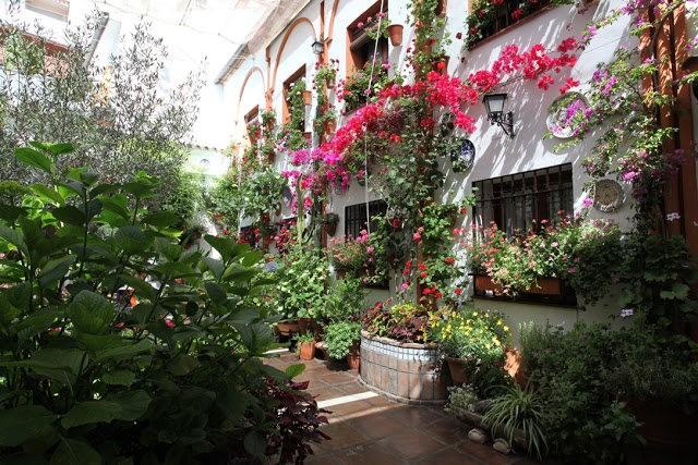 科尔多瓦的庭园_图1-28