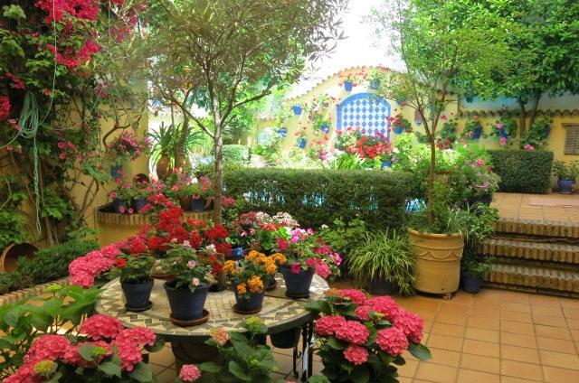 科尔多瓦的庭园_图1-33