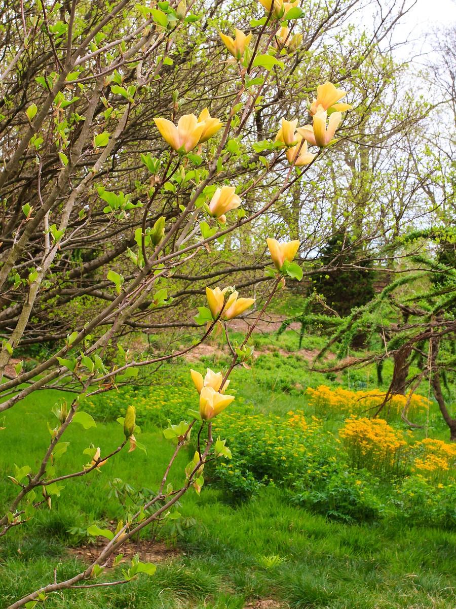 春风习习,春暖花开_图1-12