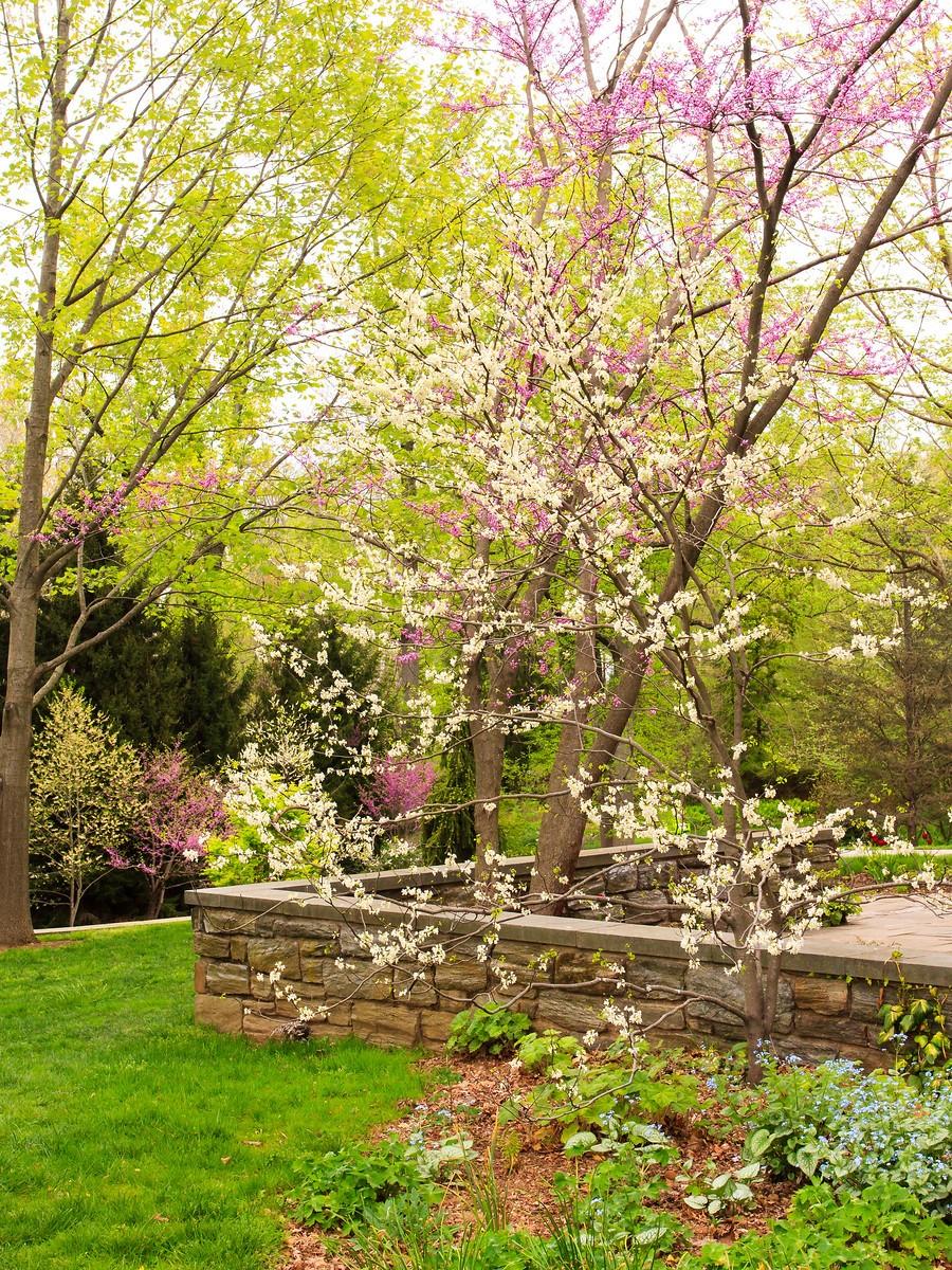 春风习习,春暖花开_图1-8