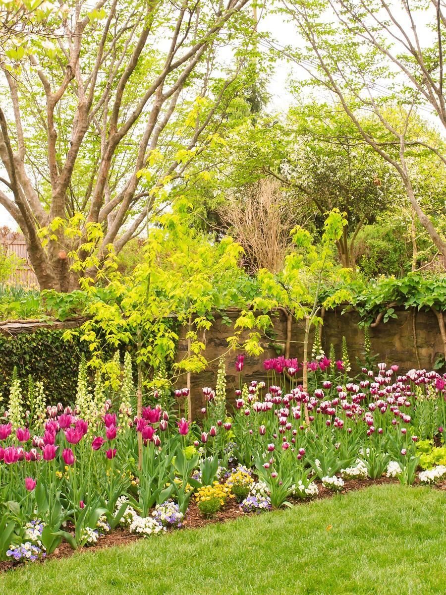 春风习习,春暖花开_图1-22