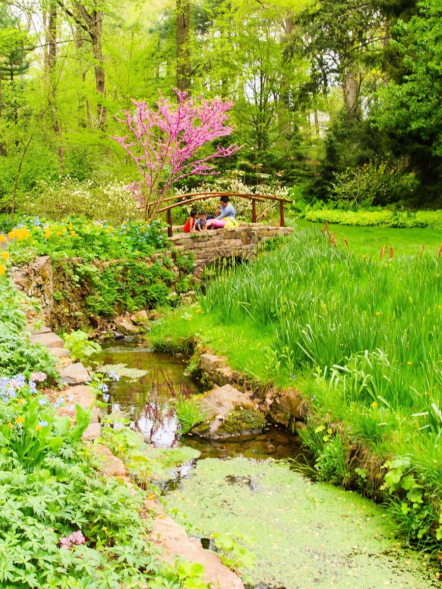 春风习习,春暖花开_图1-21