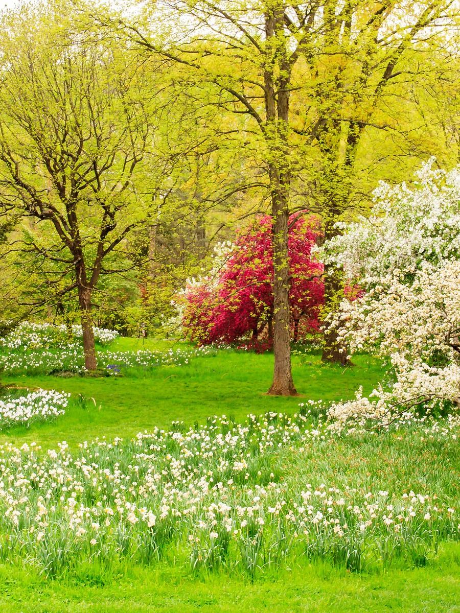 春风习习,春暖花开_图1-40